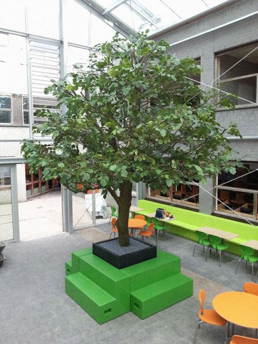 Grote Linde kunstboom geplaatst in de aula van een school. Het hele jaar door een mooie groene boom. Geen last van ongedierte en vallend blad.... Ook in de herfst niet!