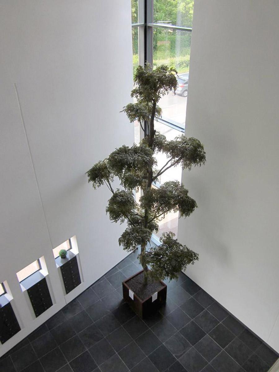 Esdoorn toeven kunstboom, perfecte aankleding van een hoge smalle hal.