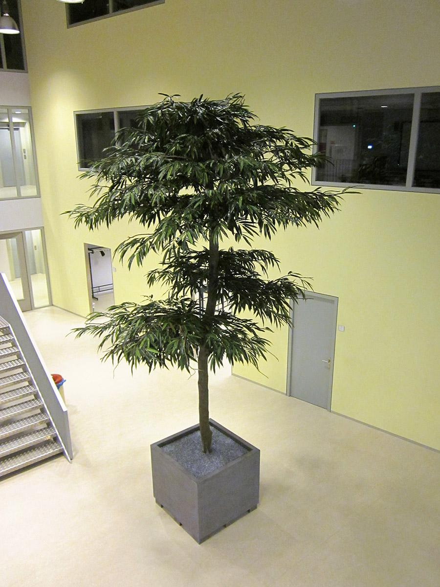 In deze aula van een school zorgt deze Longifolium schermen kunstboom voor de perfecte sfeer. Want groen in een werk/leer omgeving is rustgevend.