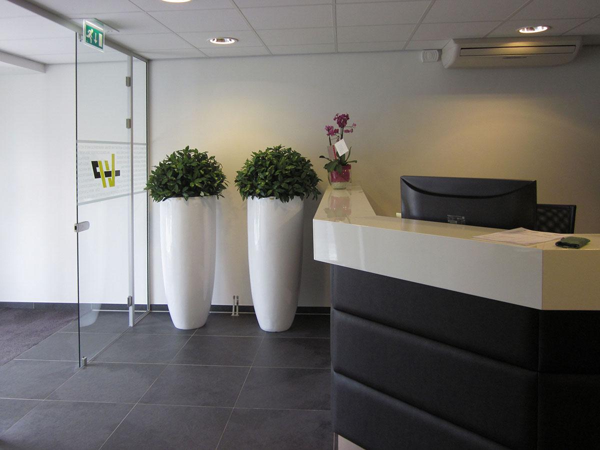 mooie kunstbolplanten in witte kunststof plantvazen