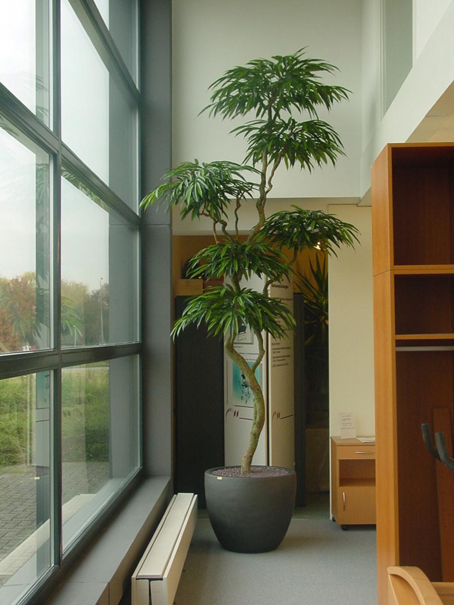 Deze Longifolium schermen kunstboom wordt door ons op elke gewenste afmeting gemaakt.