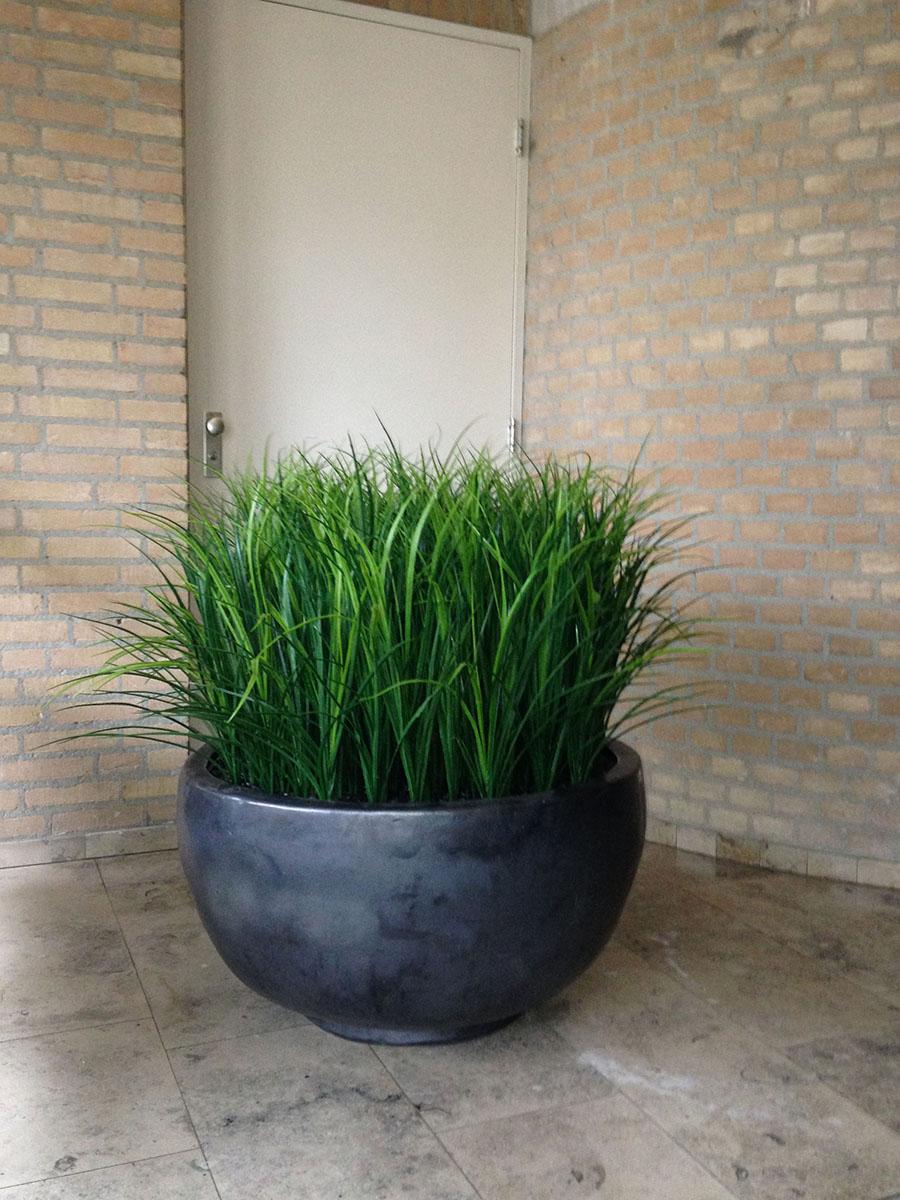 Grasplant uv bestendig in keramiek pot deluxe