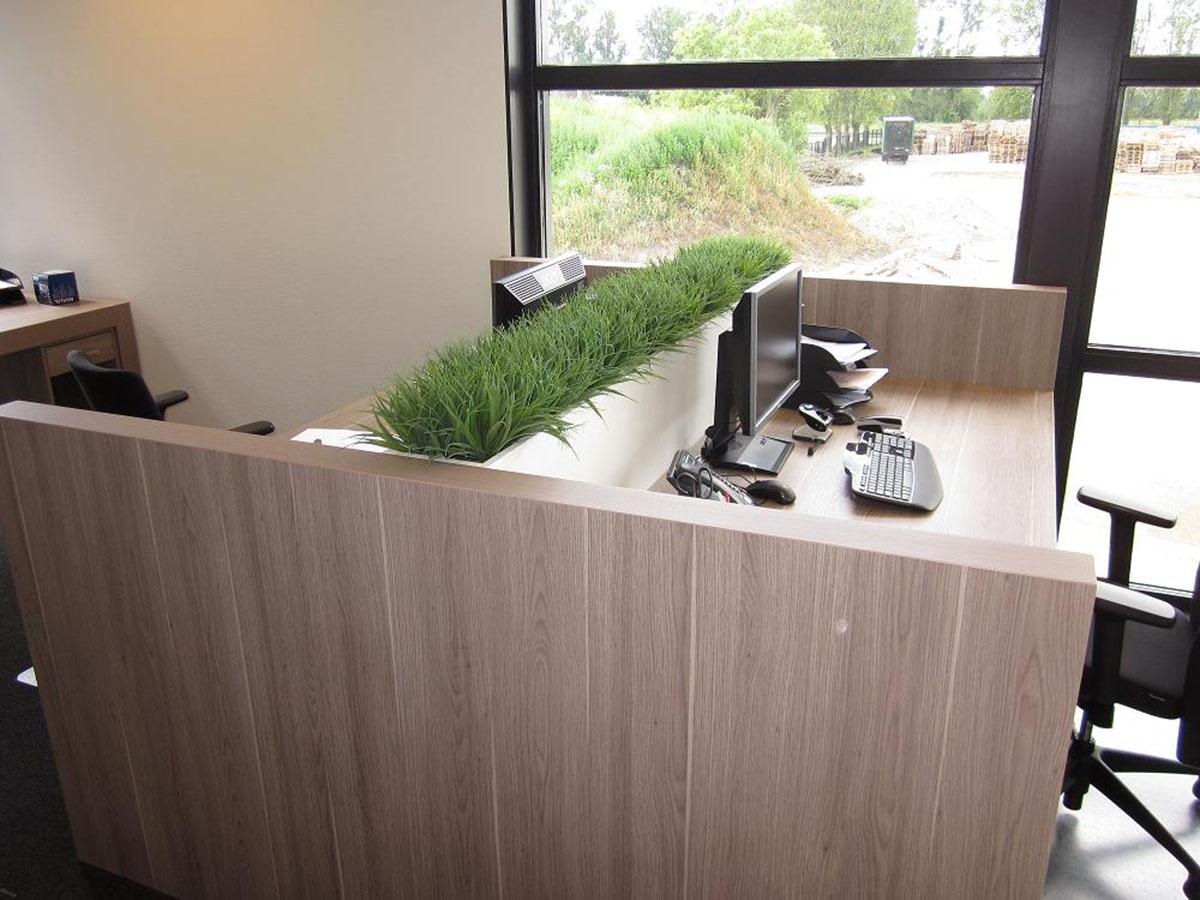 Deze kunstgrassen in plantenbak dienen als separatie tussen 2 werkplekken. Decoratief en functioneel.